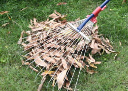 5T steel leaf rake extension collecting